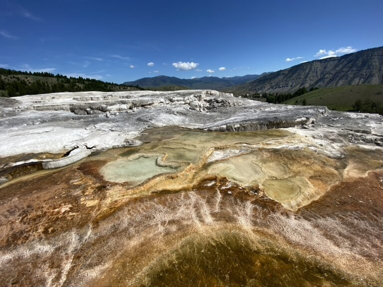 24 Hours in Yellowstone: How to Do it All With Your Time Off