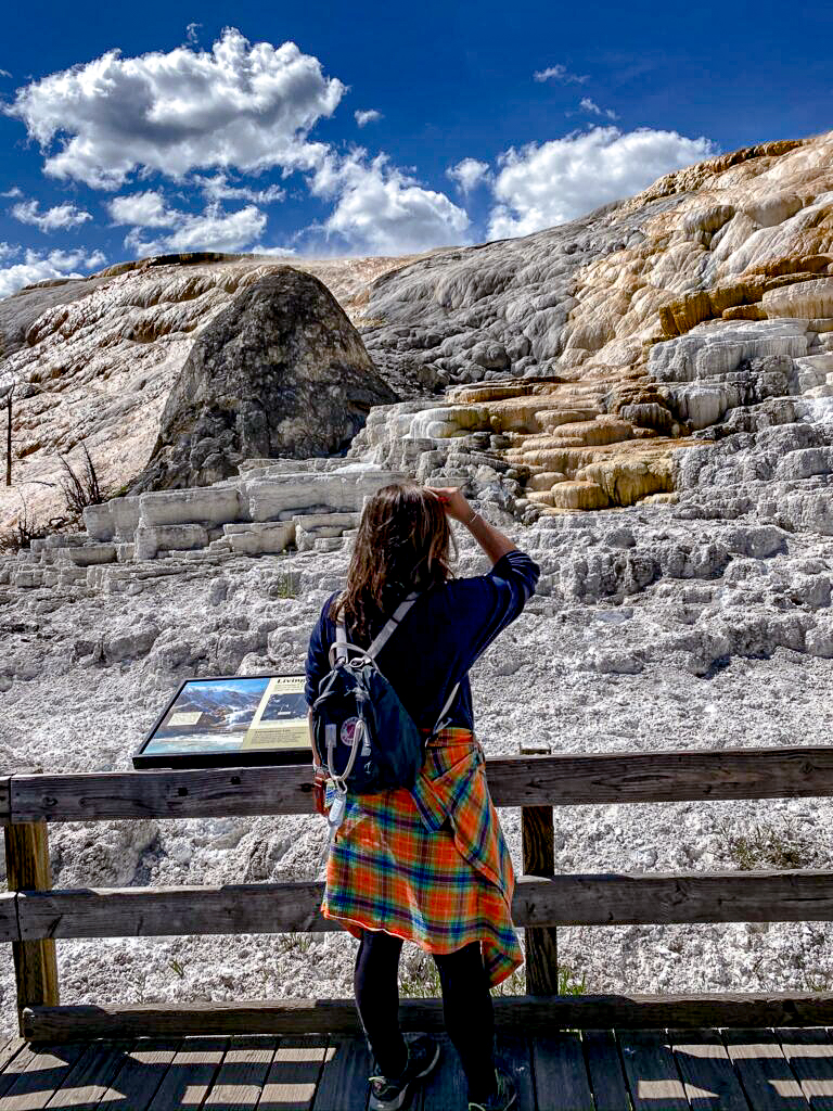 24 hours in Yellowstone- Mammoth Springs